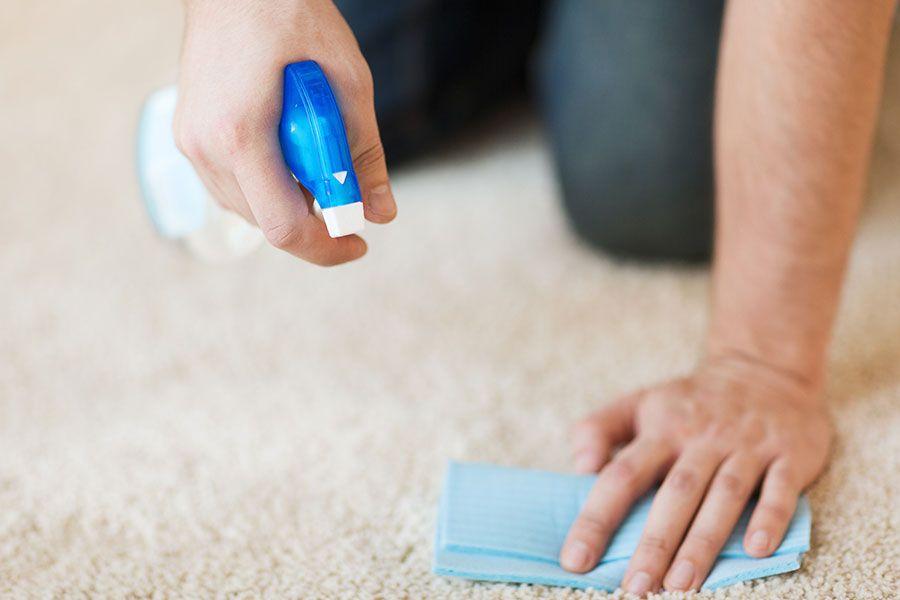 پاک کردن انواع لکه از فرش به آسانی